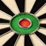 Набор для игры в дартс Winmau Champion Plus для профессионалов